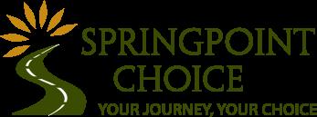 Springpoit-Logo